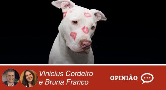 Opinião-vinicius-e-bruna