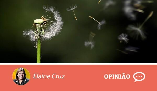 Opiniao-elaine-cruz-14-02